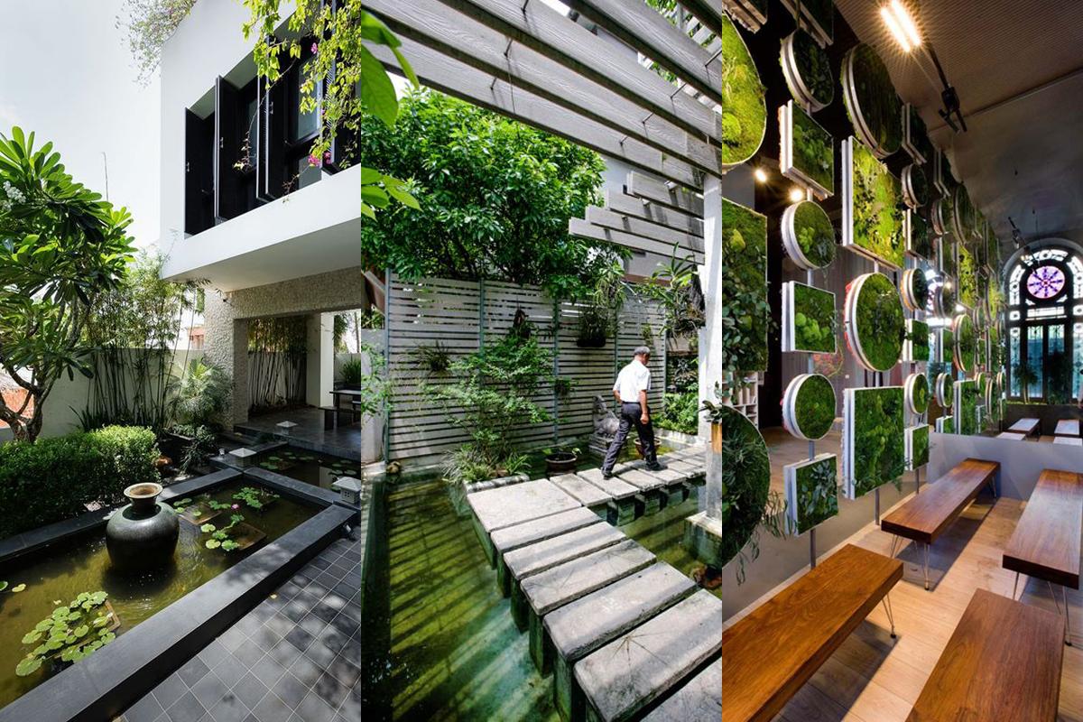 Montagem Plantas Design Verde Biofílico Água Vegetação