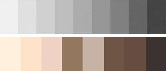 paleta de cores cinza e nude