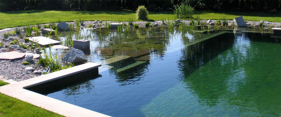 decoracao piscinas naturais